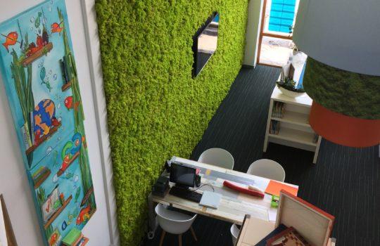 Die Grundschule Zuidstrom - die Mooswand filtert Schadstoffe