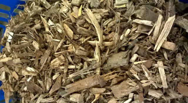 Lignocellulose-haltige Biomasse