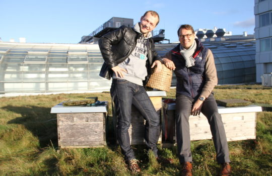 Setzen sich gemeinsam für mehr Natur in der Stadt ein: Imker Andreas Bredehorn (links) und Hoteldirektor Tim Oberdieck.