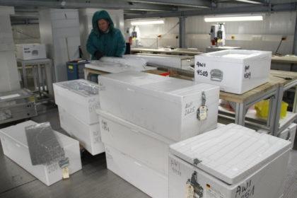 Isoliert und kalt wie eine große Gefriertruhe: das Eislabor im Alfred-Wegener-Institut für Polar- und Meeresforschung (Awi).