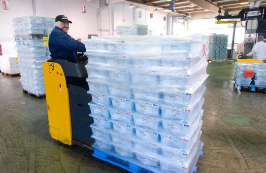 Lässt sich gut transportieren und spart Platz: Ein Blick auf eine gepackte Auslieferungspalette im Fischfisch-Logistikzentrum der Deutsche See im Fischereihafen.   Foto: Deutsche See