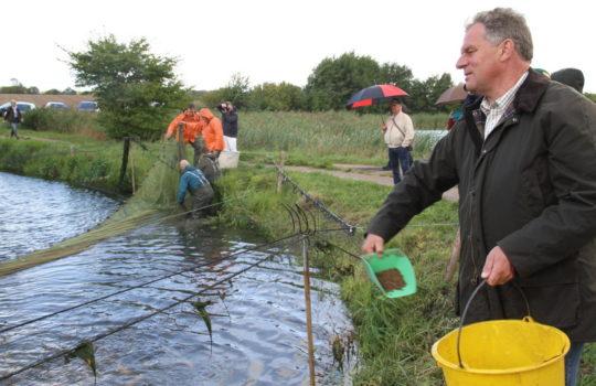Füttert die Fische gern selbst mit der Hand: Teichbesitzer Gunnar Reese. Foto: Helmut Stapel