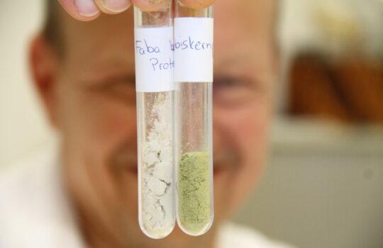 Feine Pulverform: Extrahiertes Pflanzenprotein. Foto: Helmut Stapel